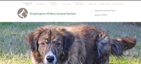 Washington Wilkes Animal Shelter